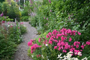 ruimte in de tuin